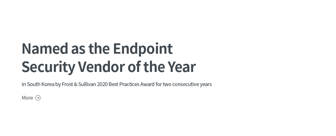 Named as the  Endpoint Security Vendor of the Year
