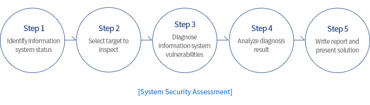 [System Security Assessment]